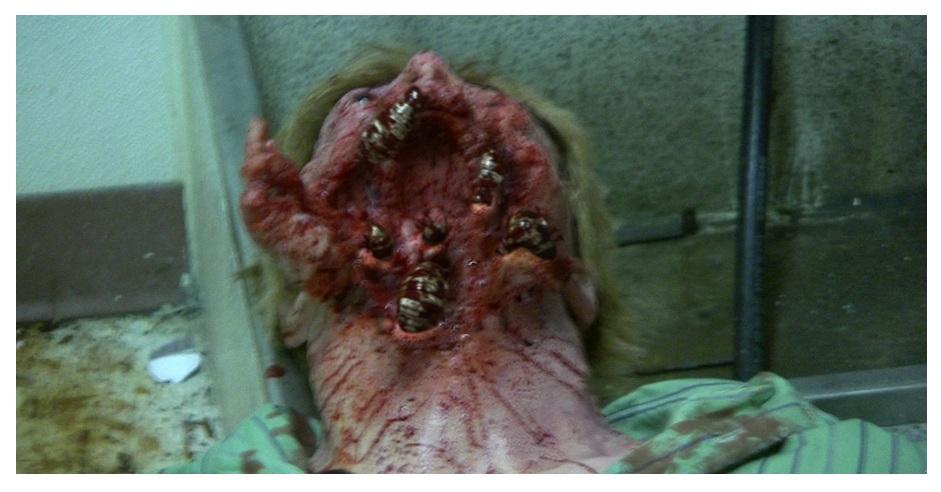 halloween horrors 2013 �the bay� trash film guru